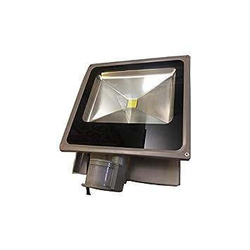 Proyector con detector y la viga LED granangular AC 50W: Amazon.es ...