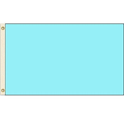 Solid Light Blue 3x5 Polyester Flag by Vista Flags