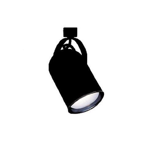 Nicor 10327BK Line Voltage Track Directional/Spot Light, Black (Back Par30 Cylinder Round)