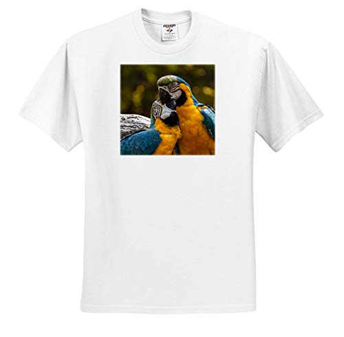 Sven Herkenrath Animal - Cutel Parrot Couple Snuggling Wildlife Photography - T-Shirts - White Infant Lap-Shoulder Tee (24M) (ts_288323_69) by 3dRose