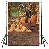 LFEEY Vinyl Thin Backdrop 3x5ft Photography Background Happy Halloween Festival Outdoor Piles Of Pumpkins Scene Backdrop,1(W)x1.5(H)m for Photo Studio -