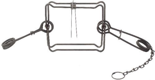 1/2 Dozen (6 PAK) Duke 220 Double Spring Body Trap for Fisher, Groundhog, and Raccoon