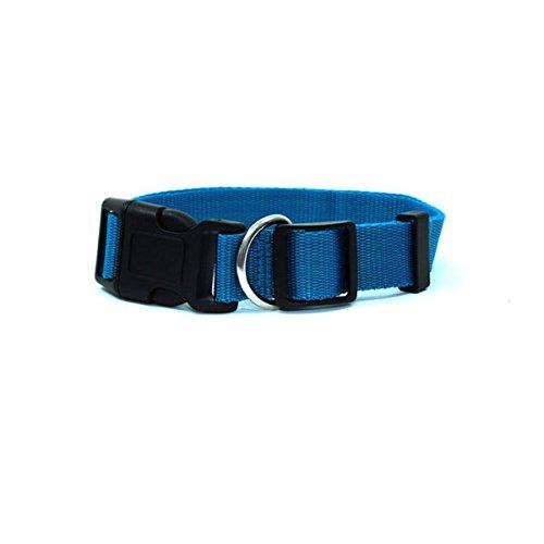 bluee Large bluee Large GKC Dog Collar (Large, bluee)