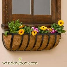 Horse Trough Planter (Standard English Garden Iron Hay Rack Window Basket w/ Coco Liner - 48 Inch)