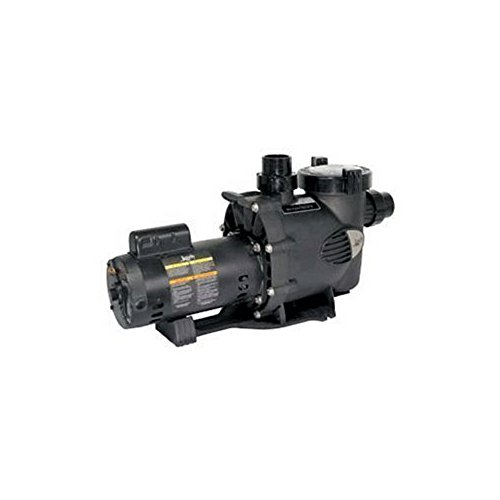 Zodiac WFTR80 80-GPM Medium Heat WaterFeature Pump by Zodiac
