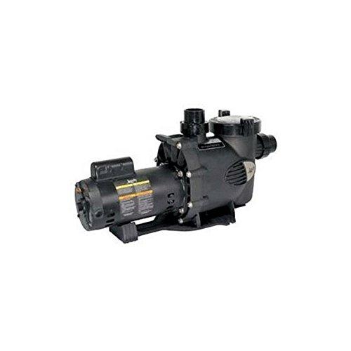 Zodiac WFTR80 80-GPM Medium Heat WaterFeature Pump (Feature Jandy Water)