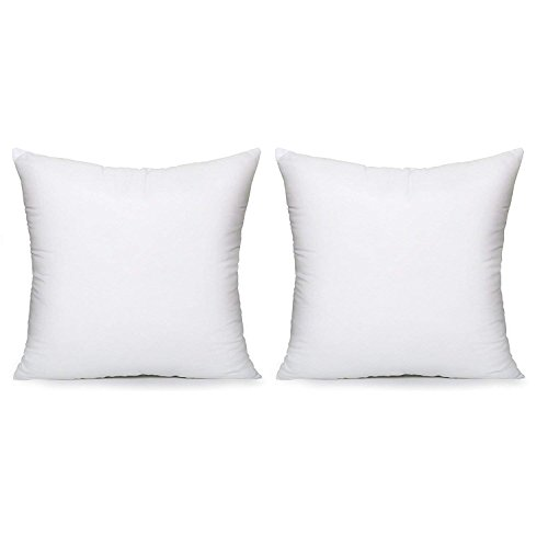 Acanva Set-of-2 Soft Hypoallergenic Pillow Inserts, 20 x 20, White (Best Pillow Inserts For Throw Pillows)