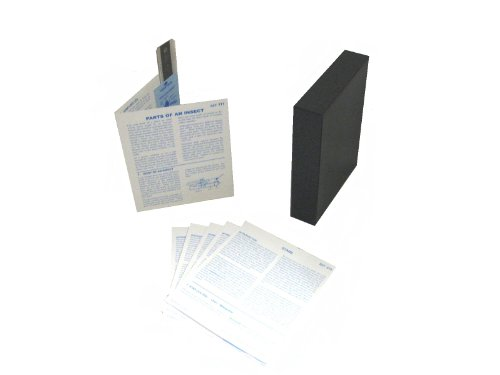 (American Educational Microslide Parts of an Insect Lesson Set (Box of 30))