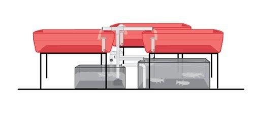 31xYPXspxPL - AquaParts SS3 Aquaponics Plumbing Kit