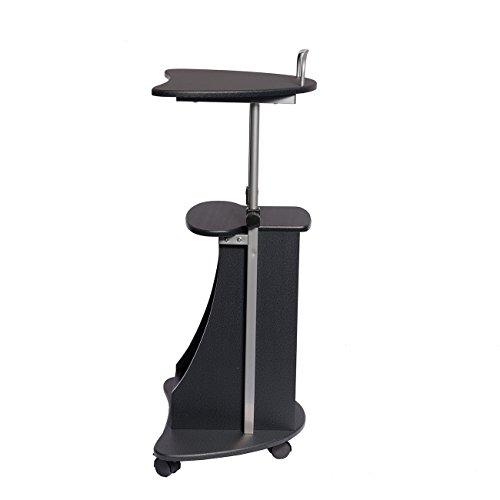 Techni Mobili Rta B002 Gph06 Sit To Stand Rolling