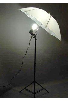 Studiohut KIT2CS Photography Studio Continuous Lighting Umbrella Kit with 30 Watts 5500K CFL Bulb (Black)