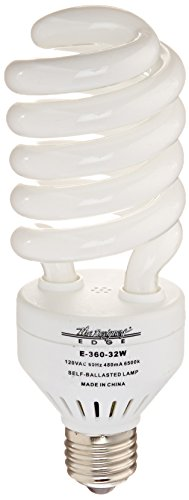 Designers Edge E36032W 32-Watt 2750-Lumens CFL Replacement Bulb ()