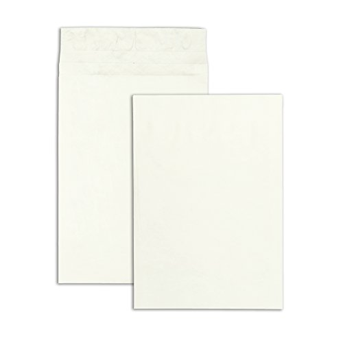 End White Plain Envelopes Expansion (Survivor R4520 Tyvek Expansion Mailer, 12 x 16 x 2, White (Case of 100))