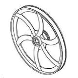Jet/Powermatic JWBS14OS-145 Lower Wheel