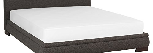 Ccs-Whtfs-Ttxl Combed Cotton with Spandex Jersey Fitted Bed Sheet, Twin X-Large, White