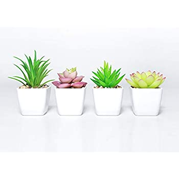Home & Garden Enthusiastic 1pc New Mini Artificial Simulation Miniature Succulents Diy Fake Plastic Green Plants Office Decor Garden Home Delicate Artificial & Dried Flowers