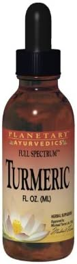 Planetary Herbals Turmeric Extract Full Spectrum Liquid, Support for Antioxidant and Healthy Inflammation Response, 4 Ounces