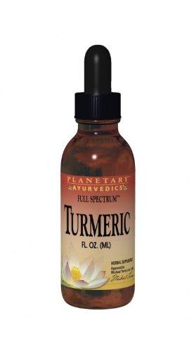 Planetary Herbals Turmeric Liquid Full Spectrum, 1 Fluid Ounce (Pack of 12) by Planetary Herbals