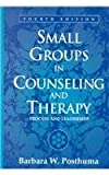 Small Groups in Counseling and Therapy : Process and Leadership, Posthuma, Barbara W., 0205332463
