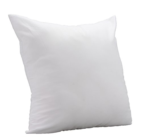 8x12 pillow insert - 9