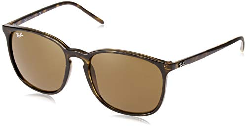 Ray-Ban Men's RB4387 Round Sunglasses, Dark Tortoise/Brown, 56 - Ban Color Ray