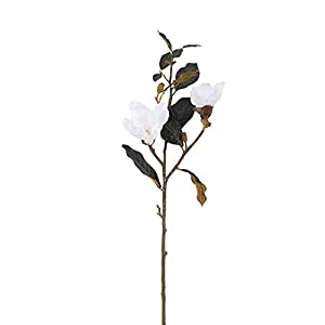 Vickerman Magnolia Stem Artificial-Flowers, 31″, White