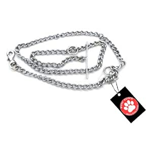 Pawzone Silver Chain for Puppy