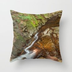 Chesterfield Gorge Strea…pillow cases decorative 20x20in pillow case