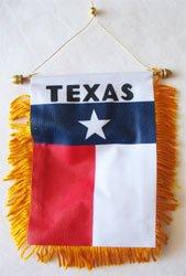 Flag Fringed Texas (Texas - Window Hanging Flag)