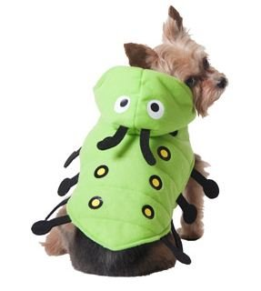 Caterpiller Dog Halloween Costume (x-small) from Unknown