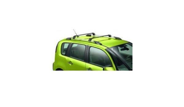 Citroen - Embellecedor derecho De techo con barras transversales, para Citroen Picasso C3: Amazon.es: Coche y moto