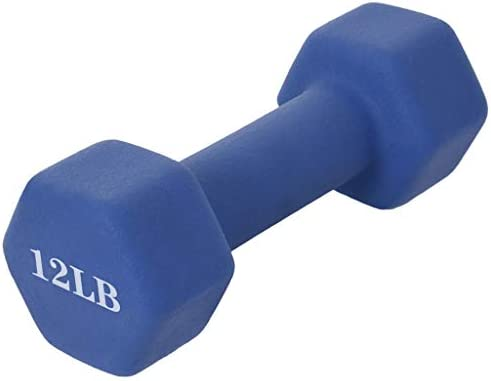 AOCEOSK Dumbbell Barbell Neoprene Coated, Weights 12 Pound, Single Dumbbell, Blue Neoprene Coated Exercise & Fitness Dumbbell for Home Gym