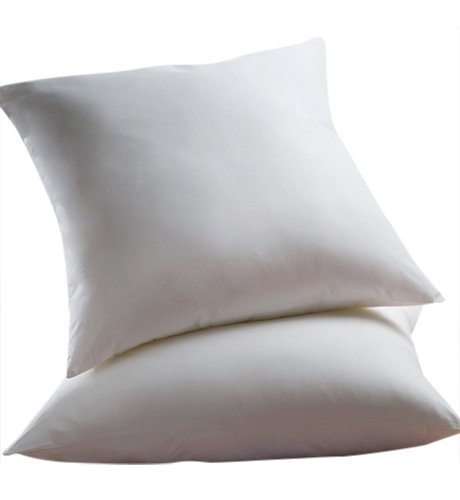 Set of 2 – 26 x 26 – Down Alternative – Euro Pillow Exclusively by Blowout Bedding
