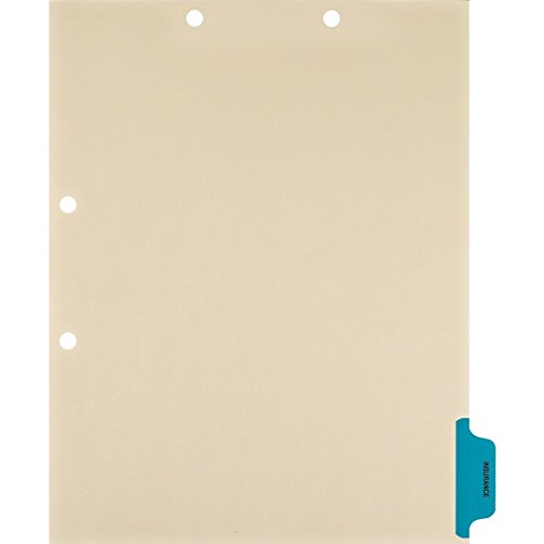 Medical Arts Press Match Colored Side Tab Chart Dividers- Insurance, Position 6 (100/Pkg) ()