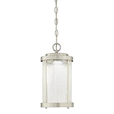 Westinghouse 6312224 Skyview One-Light LED Outdoor Pendant, Brushed Nickel Finish with Mesh and Clear Glass