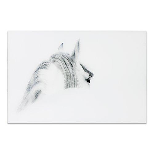 - Empire Art Direct Horse 1 Frameless Tempered Glass Black and White Wall Art, 48