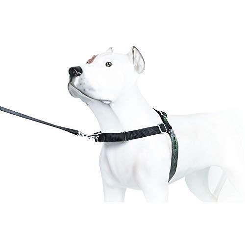 Peitoral K9 Spirit Treinamento para Cães Preto - Tamanho P