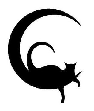 Vinyl Pouch 5.5 (Cat Moon Black Decal Vinyl Sticker Cars Trucks Vans Walls Laptop  Black  5.5 x 4 in LLI550)