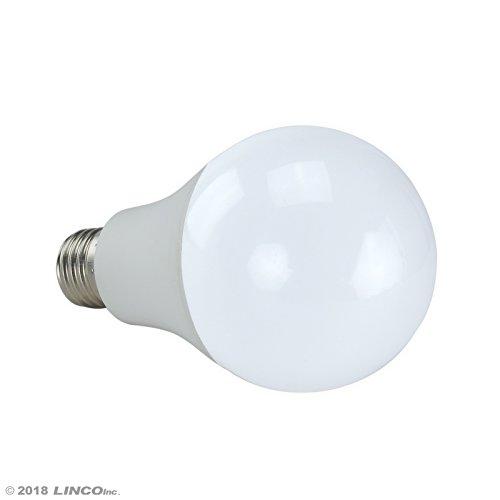LINCO Lincostore Studio Lighting LED 2400 Lumens Umbrella Light Kit AM249 by Linco (Image #4)
