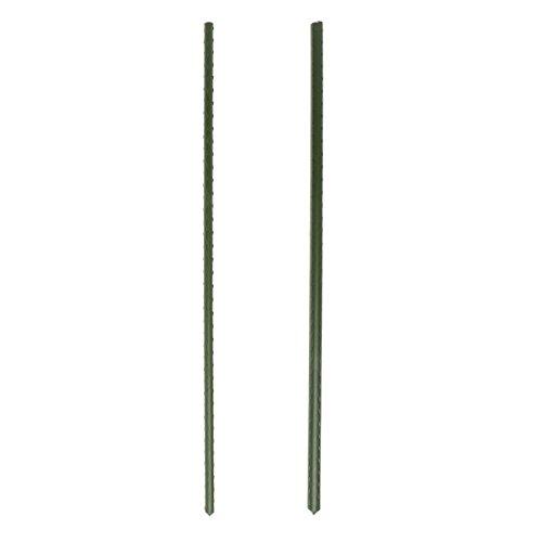 LANDUM Garden Plant Support Stakes Climbing Stand Flower Stick Cane Gardening Tool 60 cm 11 mm