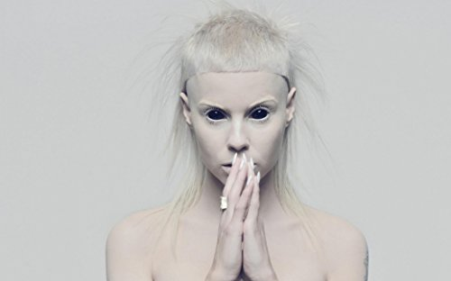 Die-Antwoord-Fabric-Cloth-Rolled-Wall-Poster-Print-Size-40-x-24-21-x-13