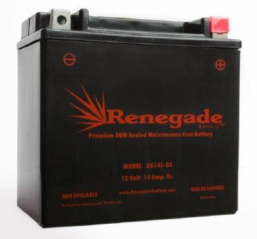 14L Bs Motorcycle Battery - 3