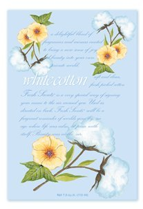 Fresh Scents Scented Sachets - White Cotton, Lot of 6 by Fresh Scents by Fresh Scents (Image #1)
