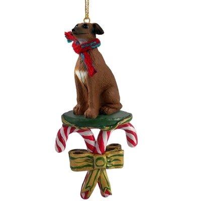 Italian Greyhound Dog Candy Cane Christmas Holiday Ornament - Amazon.com: Italian Greyhound Dog Candy Cane Christmas Holiday