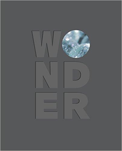 Download Wonder pdf epub