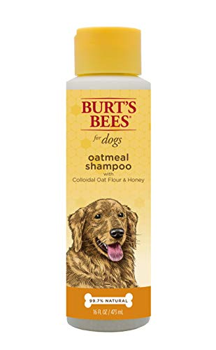 The Best Honey Oatmeal Dog Shampoo Natures Miracle