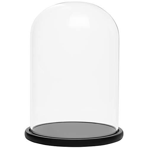 BELLE VOUS Cúpula Cristal Jarra Domo Campana con Base de Madera Negra 30 cm – Campana Cristal Decorativa Transparente…