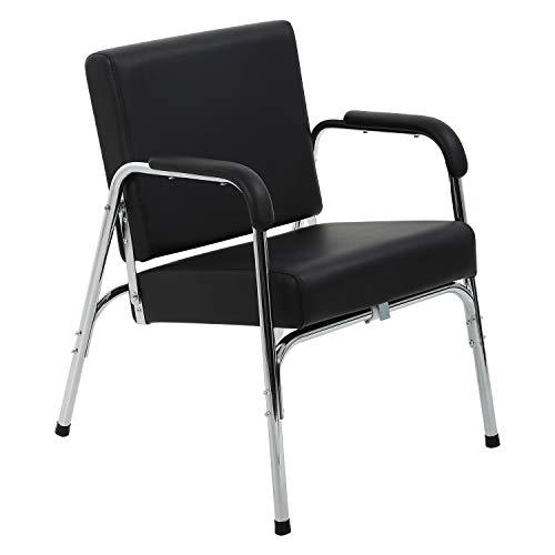 Salon Chair Barber Chair