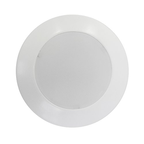 Led Disk Light 4 in Florida - 4
