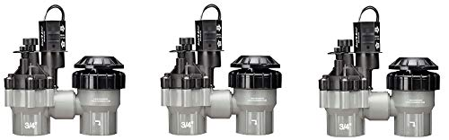 Rain Bird DASASVF075 Professional Grade Anti-Siphon Valve with Flow Control, 3/4